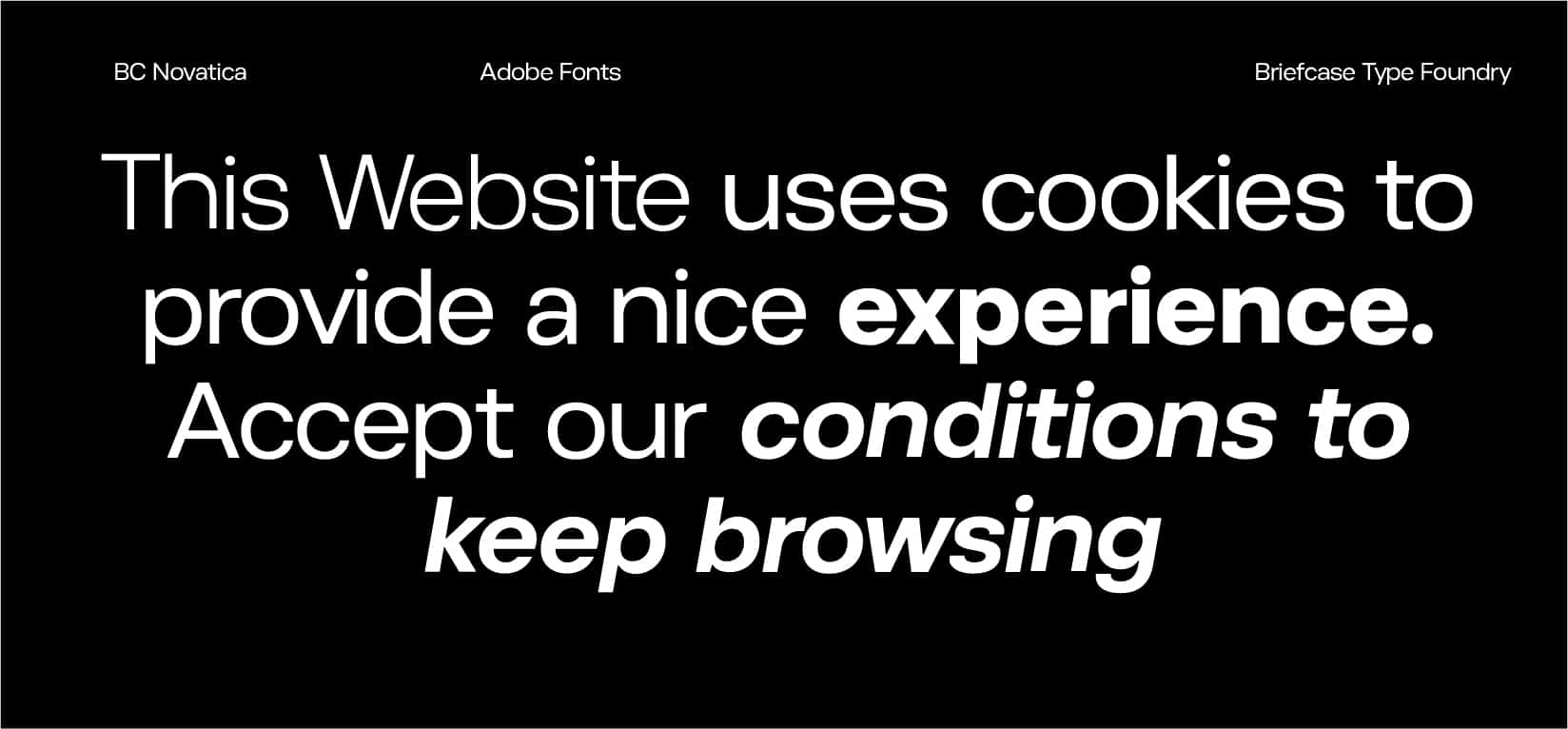 Top Adobe Fonts BC Novatica